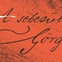 A sebesült Görgei Szegeden! – Ön lovagolt már frissen műtött koponyával?