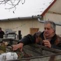 Ötven családnak osztottak ingyen tüzelőt Szőregen