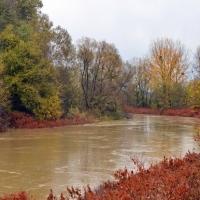 Áradnak a folyók és a patakok Vas megyében