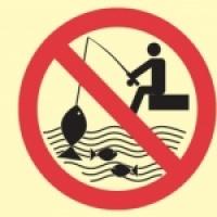 Halfogási tilalmat rendeltek el a Csongrád megyei folyószakaszokon