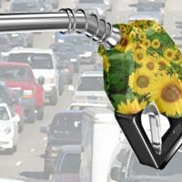 Kenyeret üzemanyag helyett!