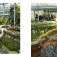 Átadták az SZTE Füvészkert megújult üvegházát