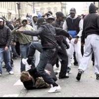 Muzulmán bűnvándorlók rombolnak Franciaországban