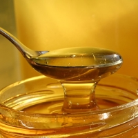 Azonnal állítsák le az ipari úton előállított méz behozatalát!