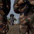 Szerbiában a hadsereg is bevetésre kész a bűnvándorlók ellen