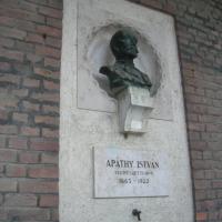155 éve született Apáthy István az idegrostok fölfedezője