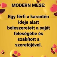 Modern mese